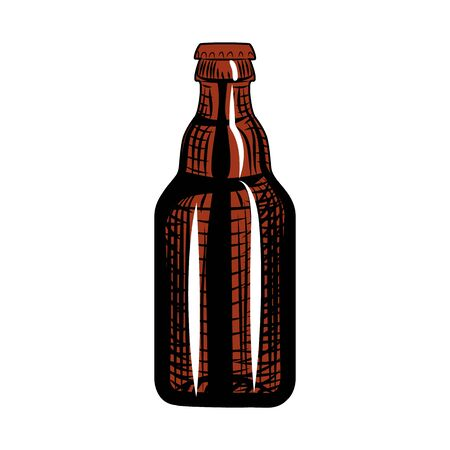 Beer bottle. Engraving style. Hand drawn vector illustration isolated on white background.