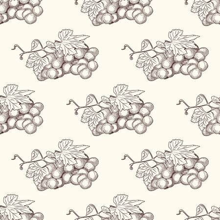 Hand drawn grape bunches and leaves seamless pattern. Ilustrace