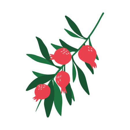 Doodle red pomegranate branch and leaves isolated on white background. Hand drawn fresh organic summer fruit. Simple cute cartoon design. Vector sketch illustration.