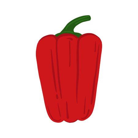 Bell pepper isolated on white background. Hand drawn red paprika vegetable. Fresh organic ingredient. Vegetarian healthy food. Vector illustration