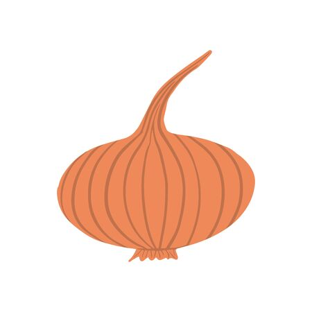 Hand drawn onion isolated on white background. Onion bulb vegetable in doodle style. Vegetarian healthy food. Fresh organic ingredient. Vector illustration Stock fotó - 138243691