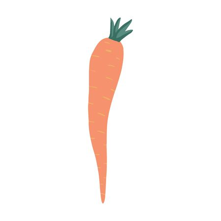 Doodle carrot isolated on white background. Vegetarian healthy food. Hand drawn vegetable. Fresh organic raw food ingredient. Cute vector illustration