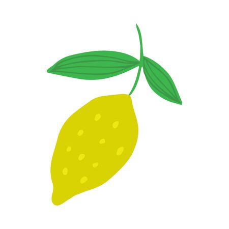 Lemon in doodle style isolated on white background. Summer fruit vector illustration. Hand drawn fresh organic citrus.