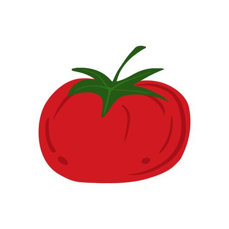Tomato in doodle style isolated on white background. Hand drawn cherry tomatoes vegetable. Fresh organic ingredient. Vegetarian healthy food. Vector illustration