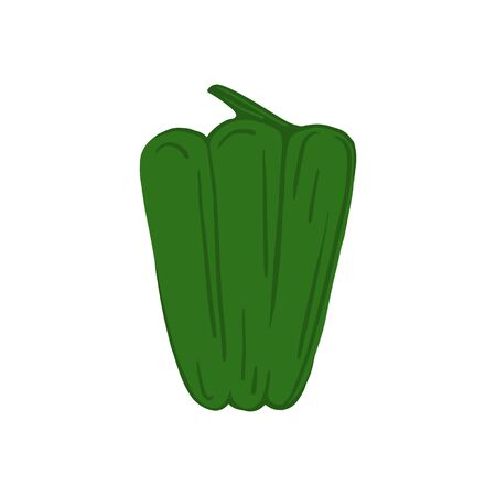 Green bell pepper isolated on white background. Hand drawn paprika vegetable. Fresh organic ingredient. Vegetarian healthy food. Vector illustration Çizim