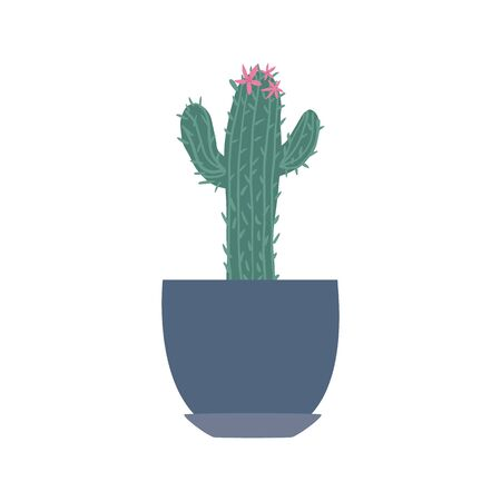Houseplant in doodle style. Cute prickly green cactus in pots. Cacti flower isolated on white background. Hand drawn floral vector illustration.
