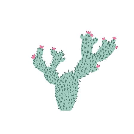 Cactus in doodle style. Cute prickly green cactus. Cacti flower isolated on white background. Hand drawn floral vector illustration.