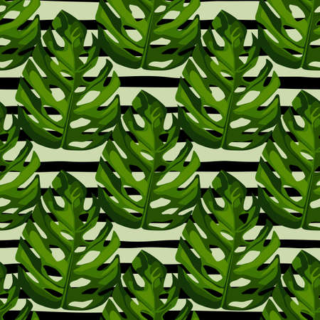 Monstera leafs seamless pattern. Botanic hand draw green elements on white background with black strips. Great for wrapping paper, textile fabric print and wallpaper. Vector illustration.