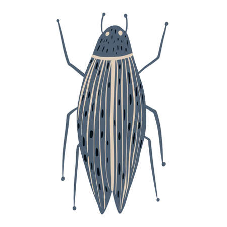Gray beetle isolated on white background. Abstract insects long in doodle vector illustration. Vettoriali