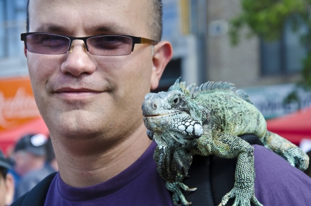 Portrait of man with iguana on his shoulder.Close up portrait of man with iguana on his shoulder photo