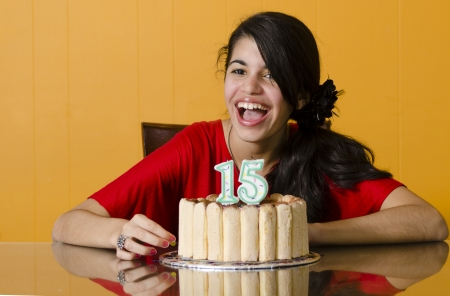 Young girl celebrates her 15th birthday at home with a nice cake Stock Photo - 15452075