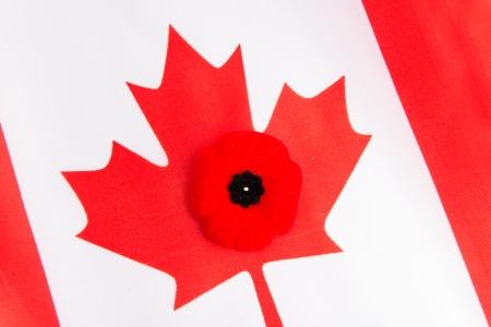 カナダの旗および赤いケシ。赤いケシは私たちの退役軍人の記憶のカナダの記号です。中心部の近くに左側に身に着けられて、ケシなったカナダの 写真素材
