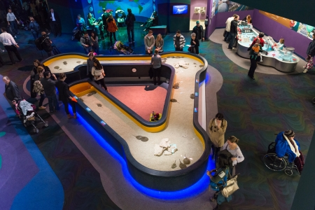 disgraceful: Toronto, Canada -November 14, 2013  Kids area inside Ripley s Aquarium  The Aquarium is a 12,500 square-metre awe-inspiring attraction with more than 5 7 million litres of water depicting marine and freshwater habitats from around the world