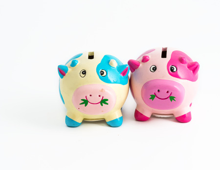 Concept of saving together. Couple of piggybanks together in saving money photo