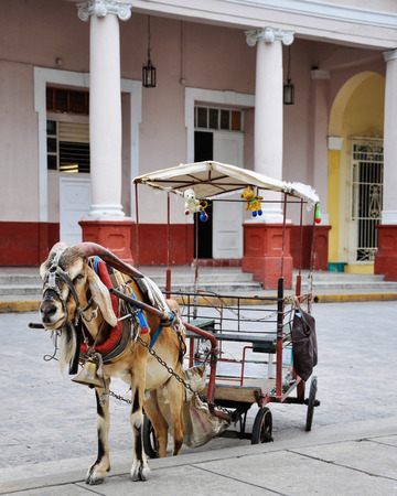entertaiment: SANTA CLARA, CUBA-JANUARY 8, 2013  The goat drawn carriage  Traditional entertaiment of Cuban children during the weekend  They circle the plaza on this carriage