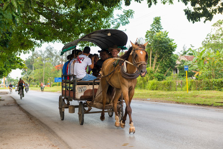 horse traction: SANTA CLARA,CUBA-JUNE 28,204: Horse drawn carrige one of the most popular ways of transportation in Cuba. After the economic reforms this are privately own business. Editorial