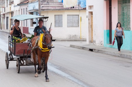 horse drawn: A lady carrying fruits and vegetables in a horse drawn 4wheeled carriage in Cuba. Horse drawn carriages are used as a common means of transport in Cuba. Editorial