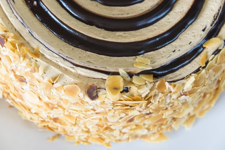 Closeup of a round butterscotch-chocolate cake with rings of chocolate paste on the top decorated with dry-fruit chips on the sides.