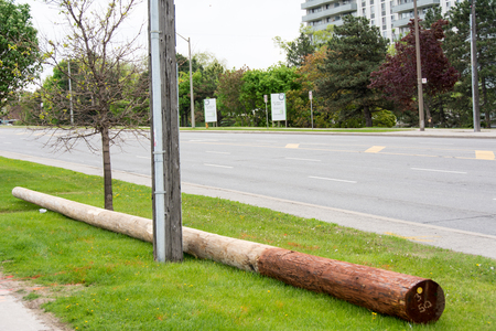 adjacent: A long wooden log placed horizontally on the ground near an electric pole. The area is adjacent to a road. Stock Photo