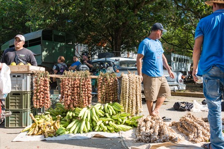 prohibitive: Cuba news: agricultural private produce abounds at challenging prices for the Cuban population. The market-like economy creates challenges to produce more money and get better quality produce. Editorial