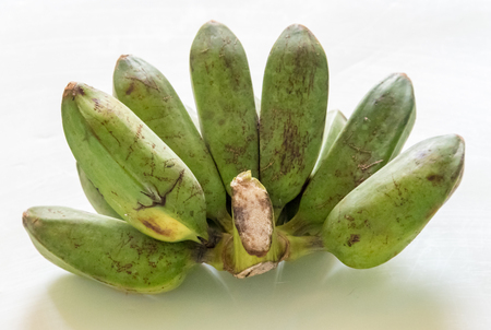 inexpensive: Bunch of green Burro Bananas against white background in Cuba.  Burro Bananas very popular and inexpensive in cuba and are available round the year.