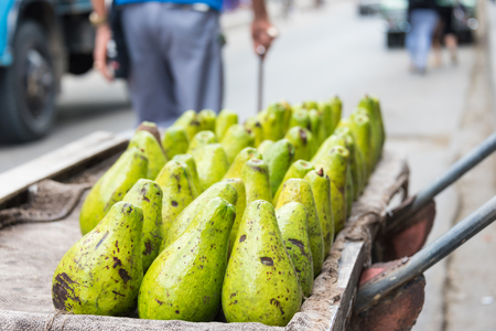 Avocados arranged in cart for sale in a Cuban street  The Cuban government reforms permit private individuals for self-employment or to operate small private businesses.