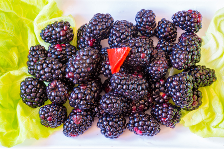 imperfect: Naturally imperfect blackberries fruit garnished with green Boston lettuce leaves.