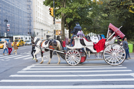 horse and carriage: Horse drawn carriage of Central Park. Tourist riding on vintage red and white horse carriage on the street of NY. Editorial
