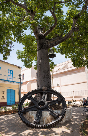 borromeo: Symbolic ceiba tree near Cathedral of St. Charles Borromeo.
