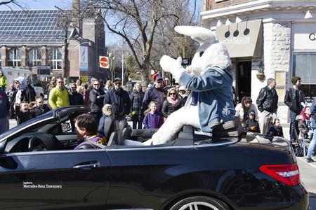 notorious: Toronto 2016 Beaches Lions Club Easter Parade: Eater Bunny greets general public. The parade celebrates 50th anniversary in the Queen Street East during Easter Sunday