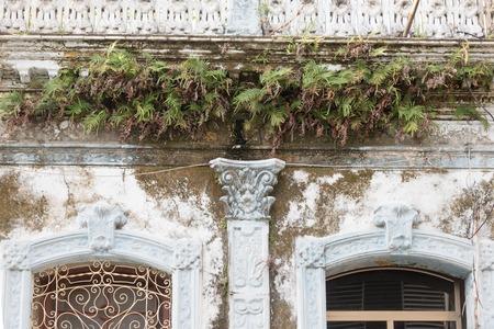 쿠바 식민지 풍 건축 세부 사항입니다. 고 사리 집 외관에서 성장입니다. 경제적 어려움으로 많은 사람들이 유지 보수없이 재산을 유지해야했습니다.