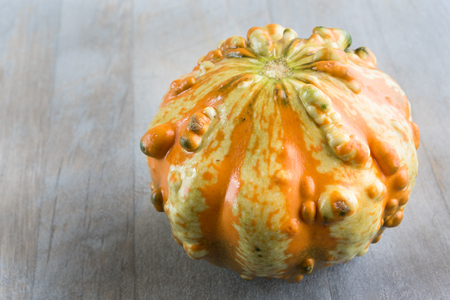 Decorative squash or gourd. They seem like traditional squash but they have a few extra bumps, colors, and strange shapes
