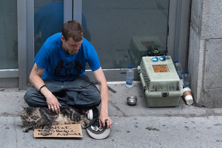 Homeless young man with cat begging for spare change on the downtown district of the Canadian city. Aerial view of a social issue.