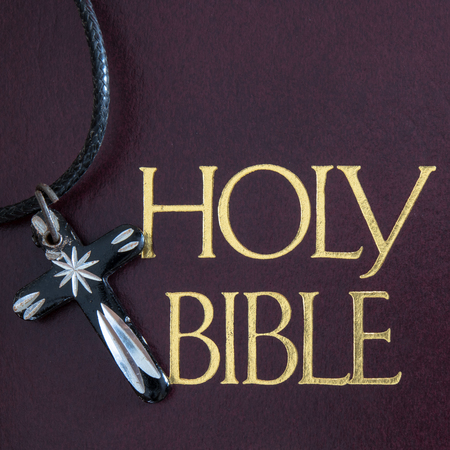 Cover of a Holy Bible. The text is written in golden letters. There is a small pendant with the Christian cross on the side. Imagens