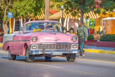 Cuban old cars in action: Driver of an open-top pink taxi talking to a man on road covered with trees.