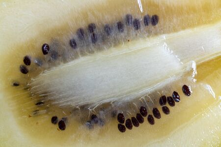 Macro of a gold kiwifruit, cross section.  Kiwis are rich in fiber and low in calories which makes them a good alternative to consider while dieting. Imagens