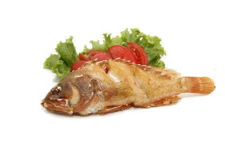 cernia: pesce rosso cernia fritta