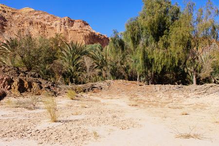 dahab: White canyon around Dahab, Egypt
