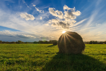 field with haystacks at sunset in early autumn evening
