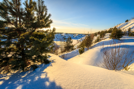 Scene of sunset at hills covered with snow in winter with pines at foreground and blue sky background.