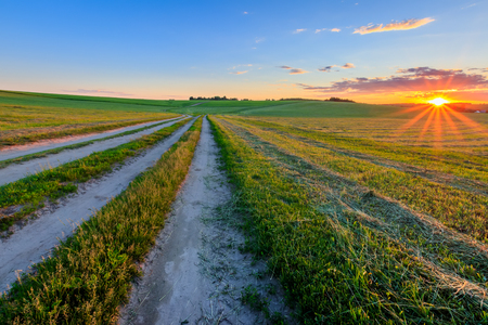 Road through cultivating the land in the countryside on a summer evening with bkue sky background. Landscape. Sunset.