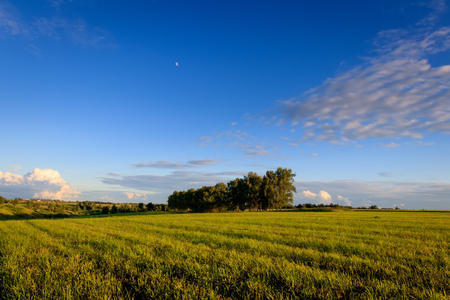 Cultivated land in the countryside on a summer evening with cloudy sky background. Landscape. Stock Photo