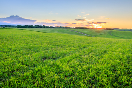 Sunset at cultivated land in the countryside on a summer evening with cloudy sky background. Landscape.