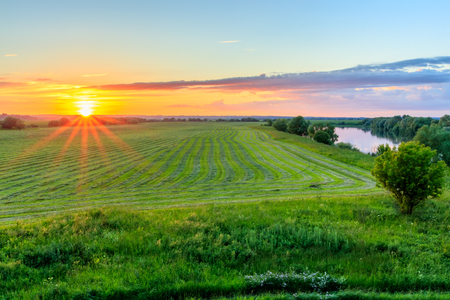 Sunset at cultivated land in the countryside on a summer evening with cloudy sky background and river.