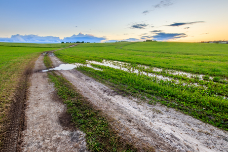 Road through cultivating the land in the countryside on a summer evening with cloudy sky background.