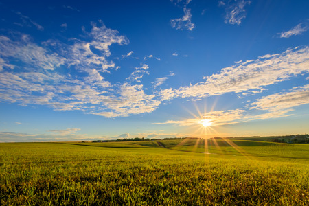 Sunset at cultivated land in the countryside on a summer evening with cloudy sky background. Stock Photo