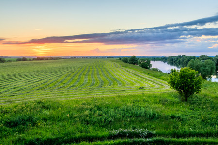 Twilight at cultivated land in the countryside on a summer evening with cloudy sky background and river.