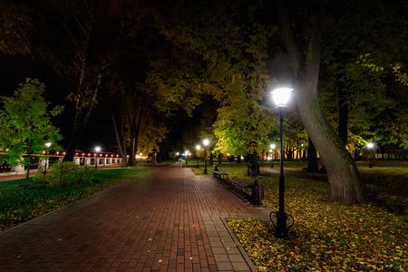 Miejski park nocny jesienią ze ścieżkami usłanymi opadłymi żółtymi liśćmi i drzewami. Krajobraz.