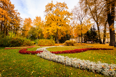 tilo: Leaf fall in the park in autumn. Landscape with maples and other trees on a cloudy day and flowerbed on a foreground. Foto de archivo