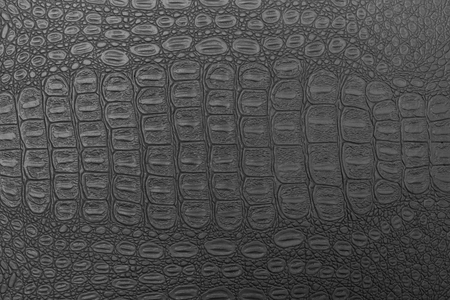Monochrome crocodile leather texture. Abstract background for design. Stockfoto